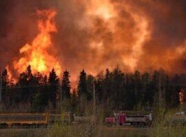 ΕΕ-Copernicus: Εκπομπές-ρεκόρ διοξειδίου του άνθρακα λόγω των πυρκαγιών του καλοκαιριού