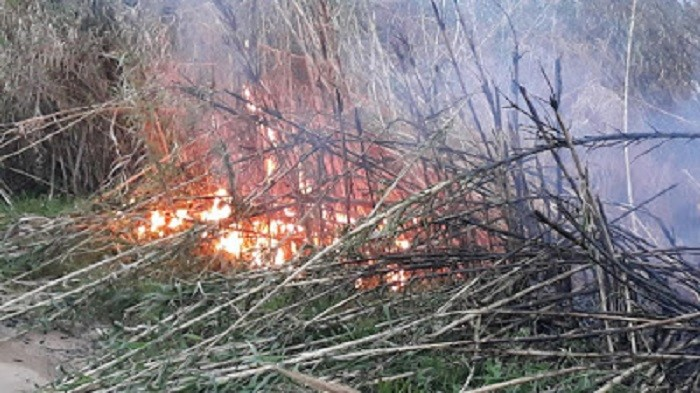 Πυρκαγιά στο Αερινό Θεσσαλίας