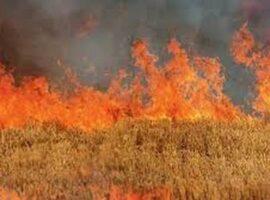 Πυρκαγιά ΤΩΡΑ εν υπαίθρω στο Κορωπί Αττικής