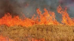 Επιβολή διοικητικών προστίμων για πυρκαγιά σε Θεσσαλονίκη και Πέλλα