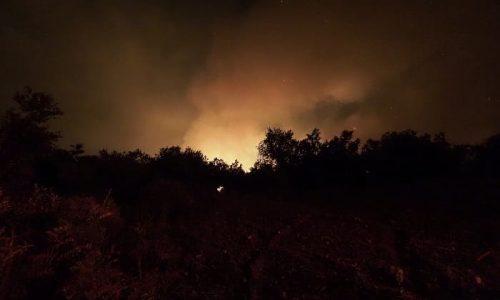Πυρκαγιά σε δασική έκταση στην περιοχή Βήσσανη Ιωαννίνων