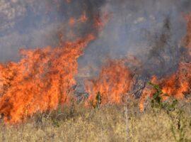 Πυρκαγιά σε χορτολιβαδική έκταση στο 13ο χλμ. Ε.Ο Ιωαννίνων – Αθηνών