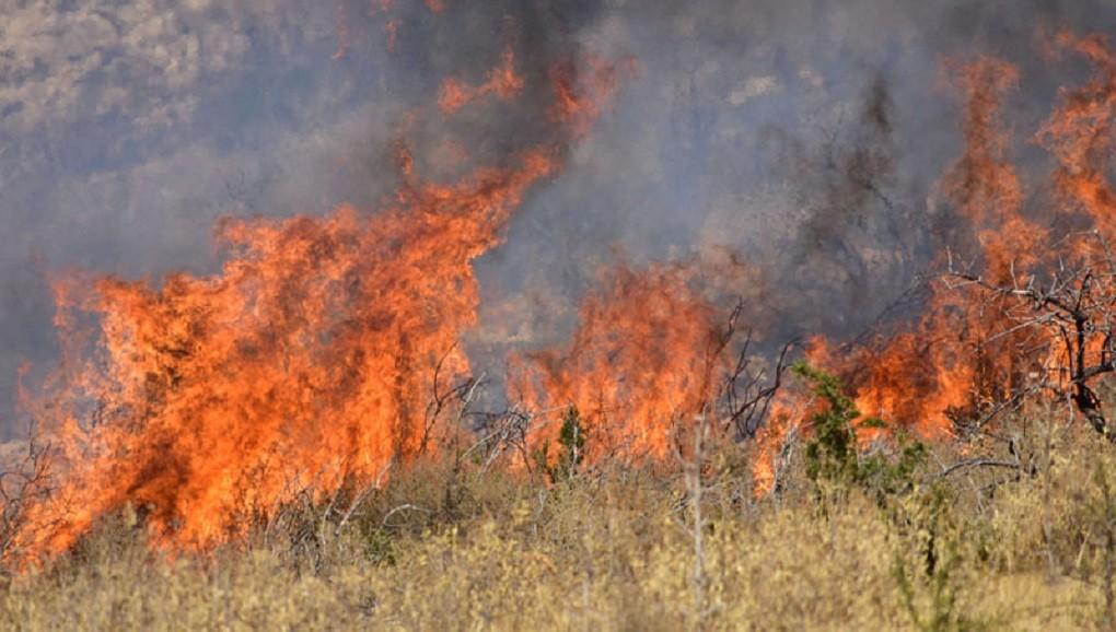 Πυρκαγιά σε χορτολιβαδική έκταση στο 13ο χλμ. Ε.Ο Ιωαννίνων - Αθηνών