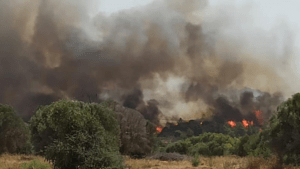 Συναγερμός στην Πυροσβεστική για δασική πυρκαγιά στην Καστοριά