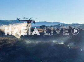 Ηλεία – Στάχτη 150 στρέμματα στα Άγνατα από τη νυχτερινή πυρκαγιά (Φωτό)
