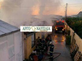 Πυρκαγιά καίει επιχείρηση θερμοκηπίων στο Ναύπλιο
