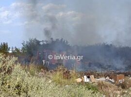 Πυρκαγιά σε παράνομη χωματερή στην Ημαθία