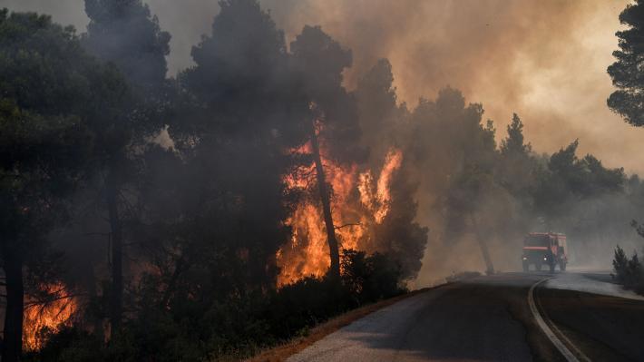 Πυροσβεστική: 57 δασικές πυρκαγιές το τελευταίο 24ωρο