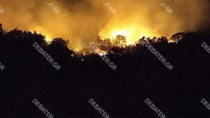 Δασική πυρκαγιά σε εξέλιξη στην Έδεσσα (Βίντεο)