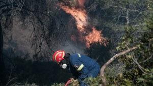 Δασική πυρκαγιά σε εξέλιξη στην Αχαία
