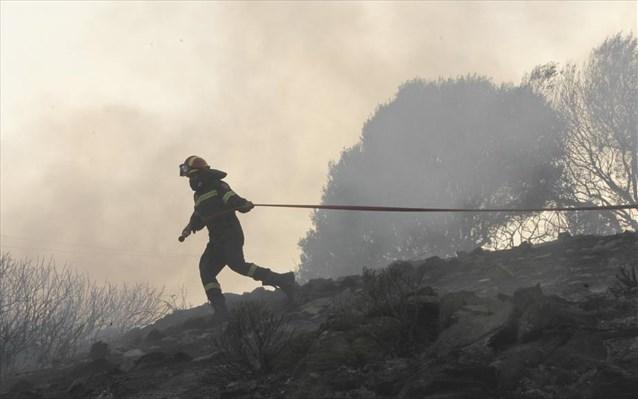 Άμεση επέμβαση της Πυροσβεστικής στις πυρκαγιές σε Φυλή και Κεντρική Εύβοια