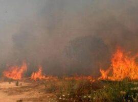 Πυρκαγιά σε χορτολιβαδική έκταση στο Μελιδοχώρι Ηρακλείου