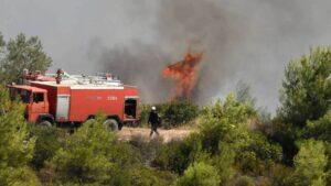 Πυρκαγιά ΤΩΡΑ σε χορτολιβαδική έκταση στην Αλεξανδρούπολη