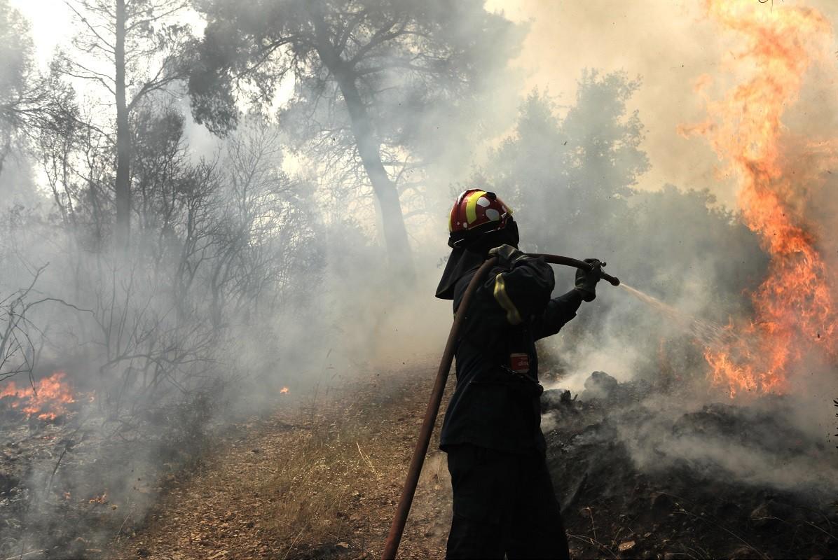 Πυρκαγιά σε χορτολιβαδική έκταση στο Κατσικάρι Ηλείας
