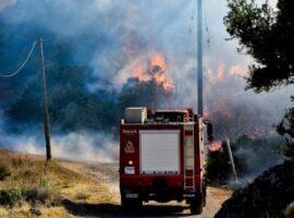 Πυρκαγιά σε γεωργική έκταση στα Δερβενάκια Αργολίδας