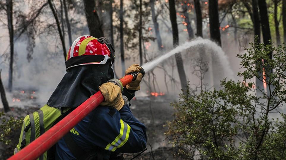 """Καταγγελίες για ανυπόγραφες διαταγές και """"βυζαντινισμό"""" στην Πυροσβεστική"""