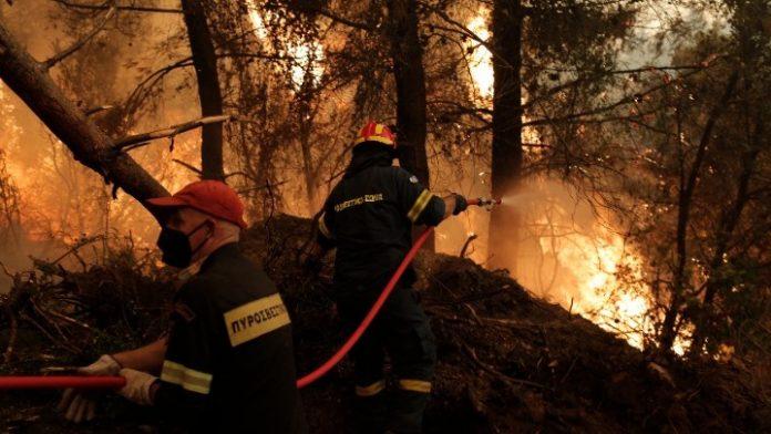 Πυροσβεστική: 47 δασικές πυρκαγιές το τελευταίο 24ωρο