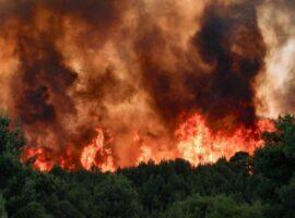 Πυρκαγιά ΤΩΡΑ σε δασική έκταση στο Νευροκοπί Δράμας