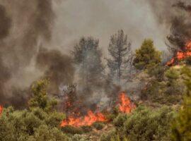 Μεγάλη πυρκαγιά σε αγροτοδασική έκταση στην Αργολίδα