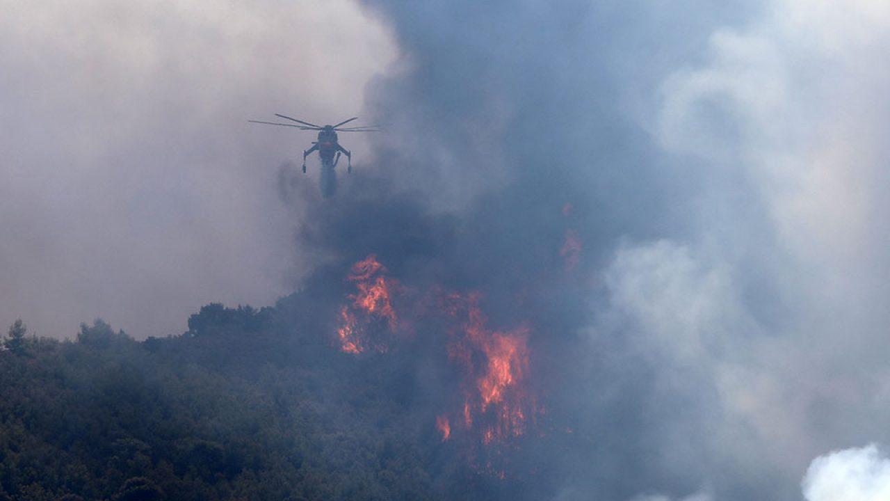 Πυρκαγιά ΤΩΡΑ σε δασική έκταση στην περιοχή Καπνοχώρι Κοζάνης