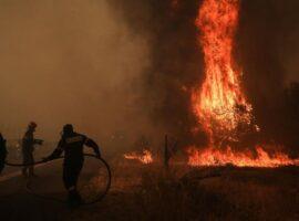 Δασικές πυρκαγιές: 50 το τελευταίο 24ωρο