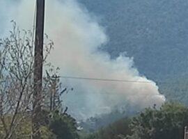 Πυρκαγιά στην Πάρνηθα: Στα χέρια της ΕΛ.ΑΣ. ένας 31χρονος για εμπρησμό