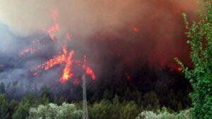 Δασική πυρκαγιά ΤΩΡΑ στην Ηλεία