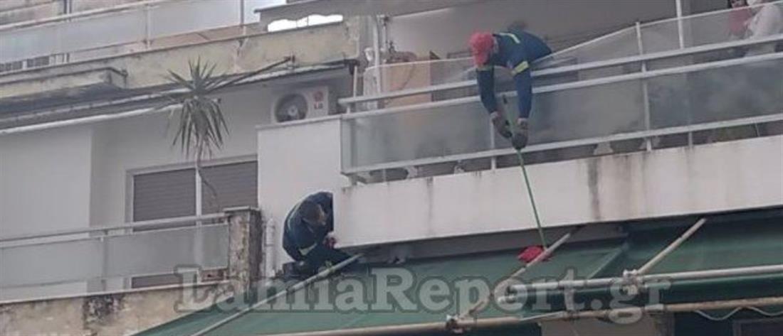 """Λαμία: """"Επιχείρηση κουνέλι"""" για την Πυροσβεστική"""