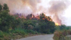 Πυρκαγιά σε εξέλιξη σε χορτολιβαδική έκταση στην περιοχή Άντισσα Λέσβου