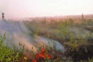 Πυρκαγιά ΤΩΡΑ σε ρεμα στης Αχαρνές Αττικής