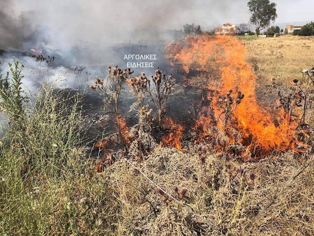 Πυρκαγιά εν υπαίθρω κοντά στο Αργολικό Αργολίδας
