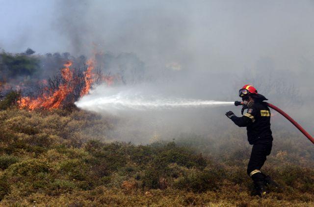 Πυροσβεστική: 10 δασικές πυρκαγιές το τελευταίο 24ωρο
