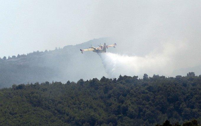 Μεγαλη πυρκαγιά σε δασική έκταση στην Αγία Άννα Βοιωτίας – Συναγερμός στην Πυροσβεστική