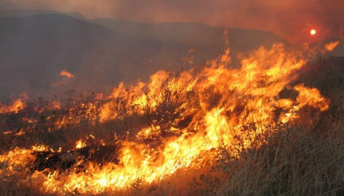 Πυρκαγιά εν υπαίθρω στην Ευξεινούπολη Μαγνησίας