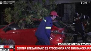 Κακοκαιρία «Αθηνά» – Πάνω από 120 κλήσεις στην πυροσβεστική για αντλήσεις υδάτων και κοπές δένδρων