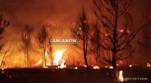 Πυρκαγιά σε εξέλιξη στο Μαρτίνο – Καίει στην περιοχή «Μοναχού»