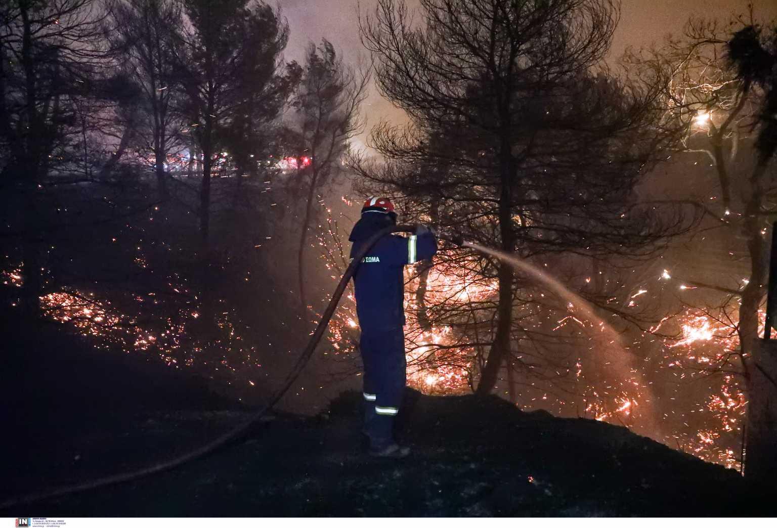 Παρέμβαση εισαγγελέα για τις συνεχείς πυρκαγιές στη Νέα Μάκρη