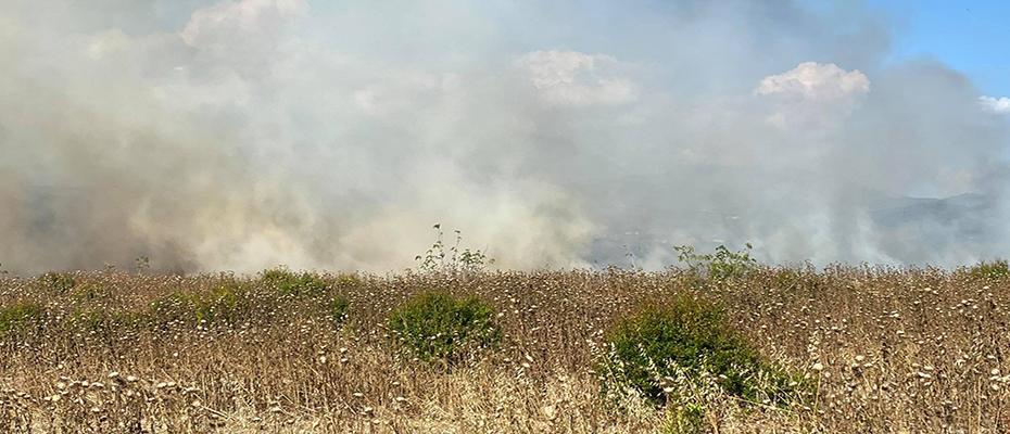 Πυρκαγιά εν υπαίθρω στο Ηραίο Αργολίδας