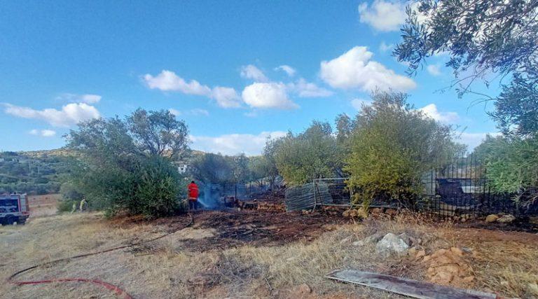 Νέο περιστατικό με πυρκαγιά στο Δήμο Σπάτων Αρτέμιδος (φωτό)