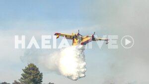 Βίντεο και φωτογραφίες από την δασική πυρκαγιά στα Αστερέικα Ηλείας