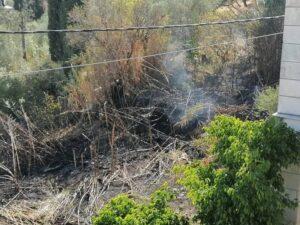 Ζακυνθος-Επικίνδυνη πυρκαγιά ξέσπασε σε καλαμιώνες κοντά σε σπίτια στο Καταστάρι (βίντεο)