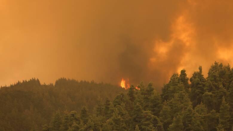 Πυροσβεστική: 65 δασικές πυρκαγιές το τελευταίο 24ωρο