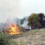 Πυροσβεστική: 5 δασικές πυρκαγιές το τελευταίο 24ωρο