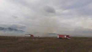 Περίπου 100 στρέμματα κάηκαν στην πυρκαγιά της Ν. Ποτίδαιας