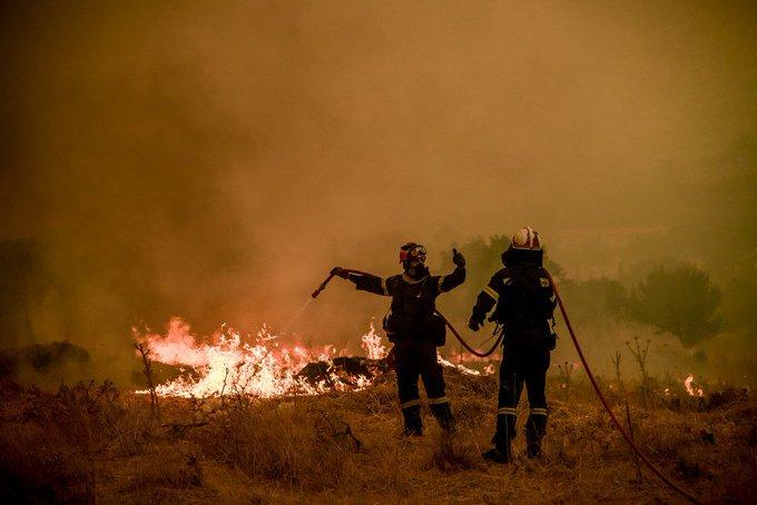 Πυροσβεστική: 44 δασικές πυρκαγιές το τελευταίο 24ωρο